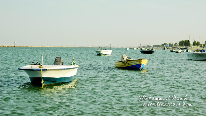 boats-in-arabian-gulf