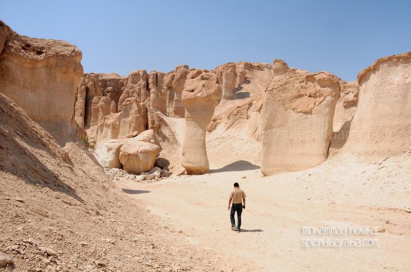 qarah landscape